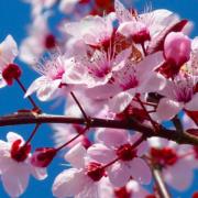 季節の変わり目は、◯◯強化!今月の健康対策は?